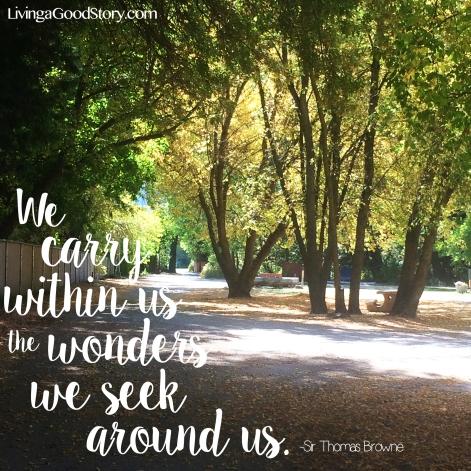 Wonders we Seek