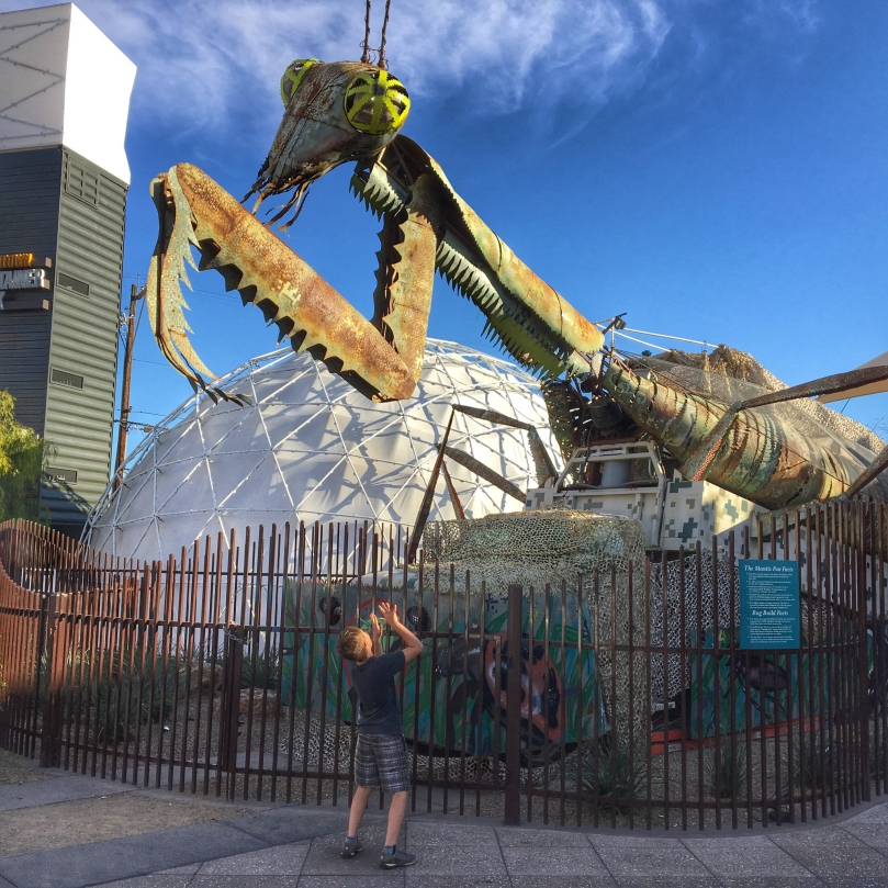 Container park mantis(1)