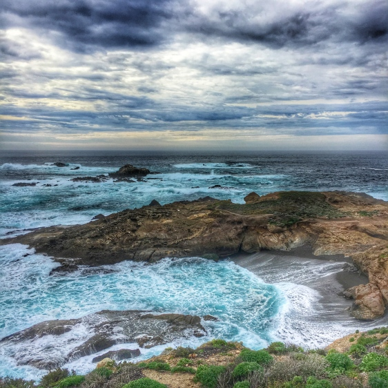 point lobos 5