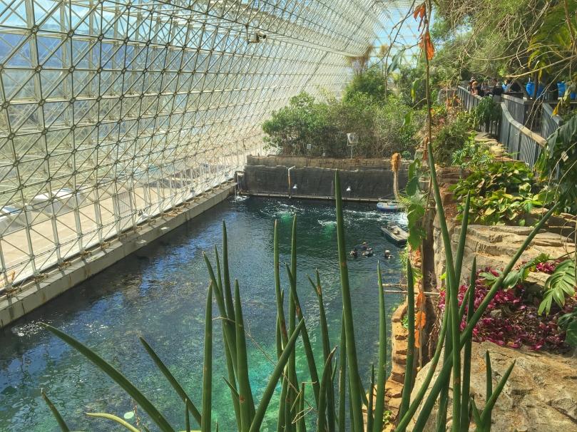 Biosphere Ocean.jpg