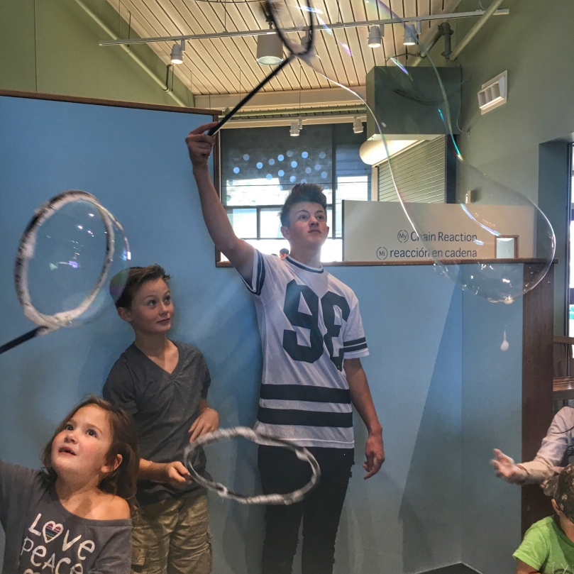 science museum reece