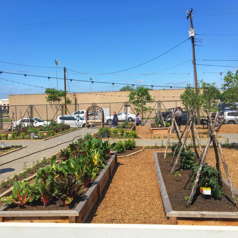 wac raised beds.jpg