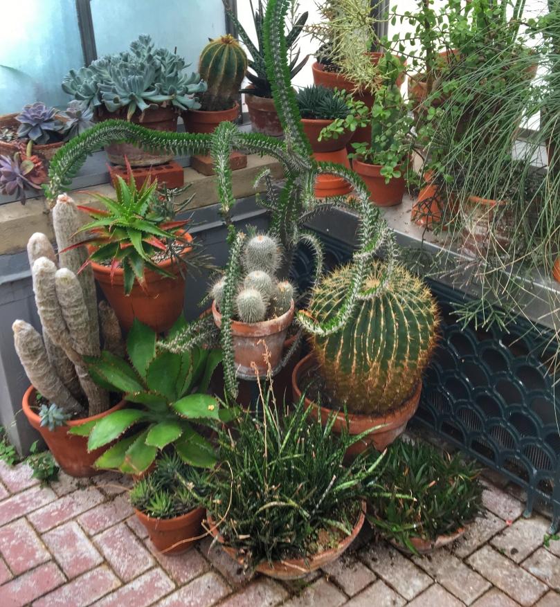biltmore garden 1