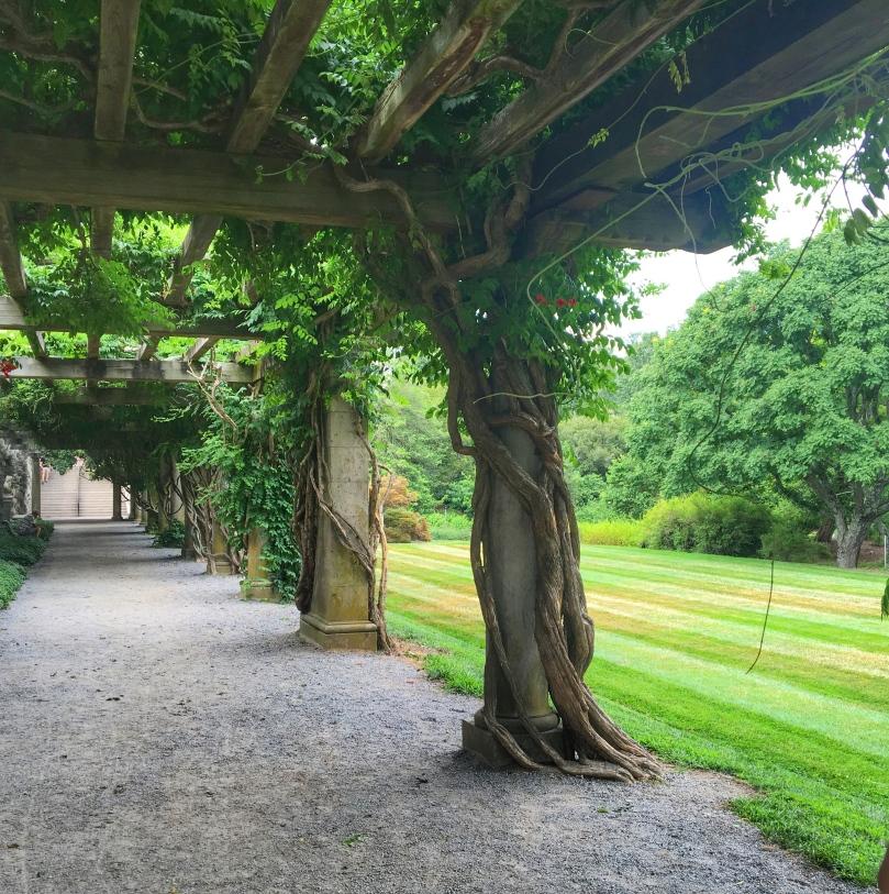 biltmore garden 5