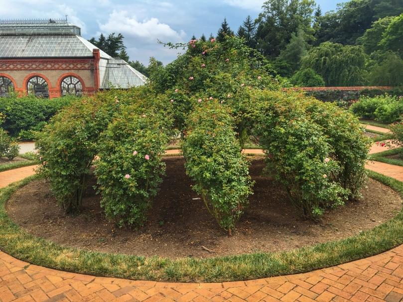 biltmore garden 6